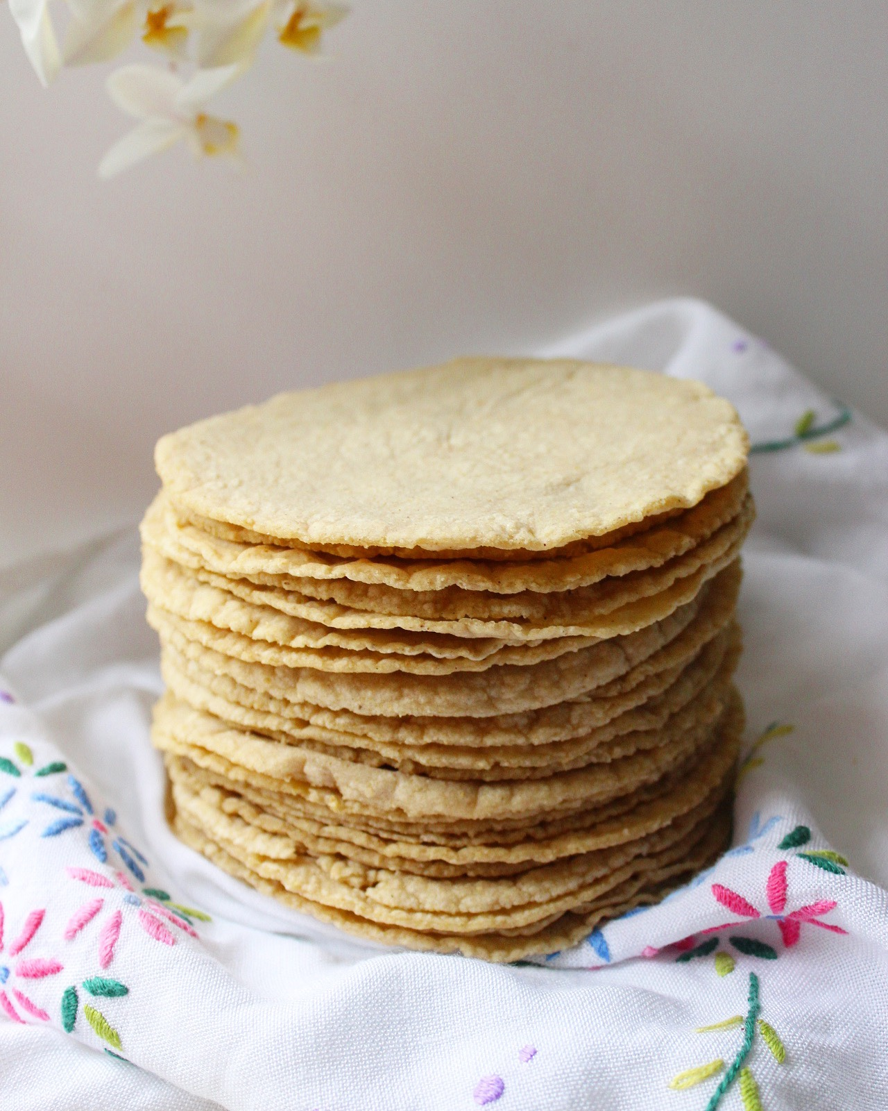 Tortillas de Maíz (Corn Tortillas)